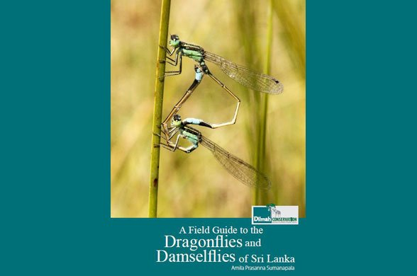 A Field Guide to Dragonflies and Damselflies of Sri Lanka