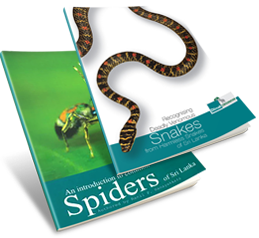 "An Introduction to Common Spiders of Sri Lanka"" and ""Recognising Deadly Venomous Snakes from harmless Snakes of Sri Lanka"